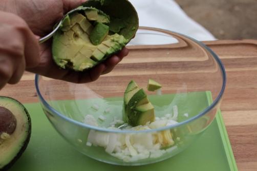 1-avocado salad 080